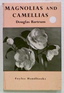Magnolias and Camellias
