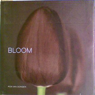Bloom (Large Format)