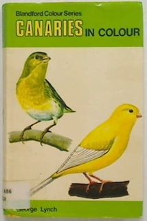 Canaries in Colour