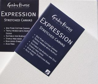 EXPRESSION LIGHTWEIGHT STRETCHED CANVAS