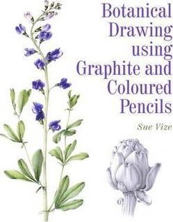BOTANICAL DRAWING GRAPHITE AND COLORED P