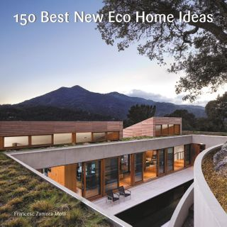 150 BEST ECO HOME IDEAS