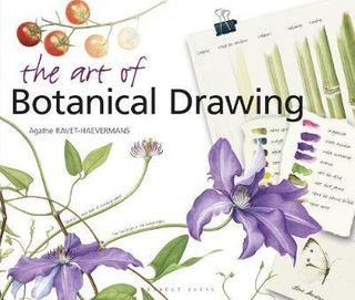 ART OF BOTANICAL DRAWING