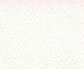 CANSON MI-TEINTES 50X65CM 160G 335 WHITE