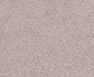 CANSON MI-TEINTES 50X65CM 160G 426 MOONSTONE
