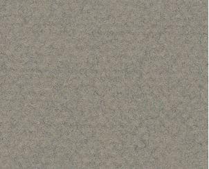 CANSON MI-TEINTES 50X65CM 160G 429 FELT GREY