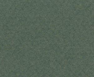 CANSON MI-TEINTES 50X65CM 160G 448 IVY
