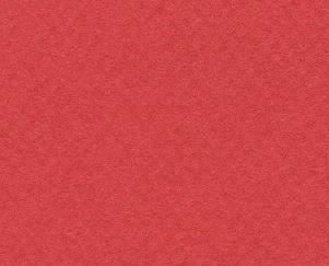CANSON MI-TEINTES 50X65CM 160G 506 POPPY RED