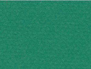 CANSON MI-TEINTES 50X65CM 160G 575 VIRIDIAN