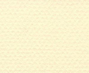 CANSON MI-TEINTES A4 160G 101 PALE YELLOW