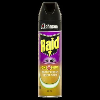 Raid One Shot Multi Purpose Insect Killer 375g ea