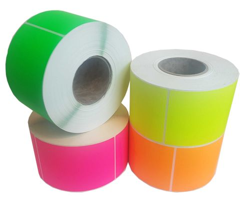 Paper Backed Labels 102mm X 150mm Green - Roll of 1,000