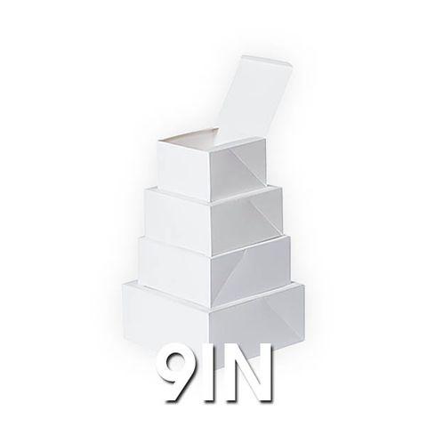 Cake Boxes 9In - 400um