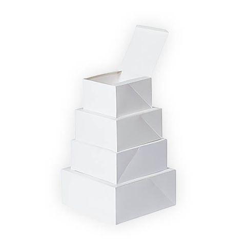 Cake Boxes 10In - 400um
