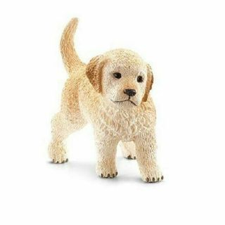 GOLDEN RETRIEVER PUPPY 16396