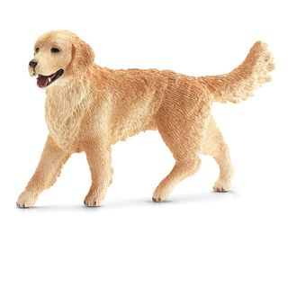 GOLDEN RETRIEVER FEMALE 16395