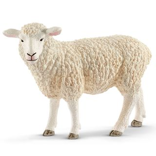 SHEEP 13882