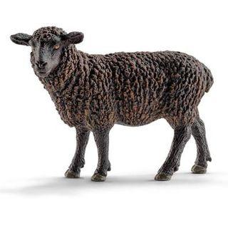 BLACK SHEEP 13785