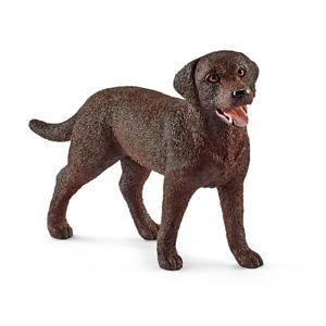 LABRADOR RETRIEVER FEMALE 13834
