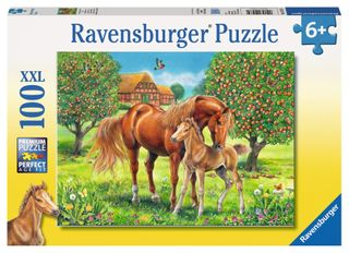 HORSES IN THE FIELD PUZZLE 100 PCE