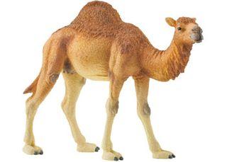 CAMEL DROMEDARY 14832