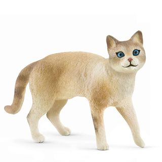 SIAMESE CAT 13932