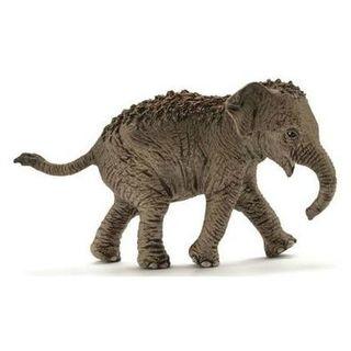 ASIAN ELEPHANT CALF 14755