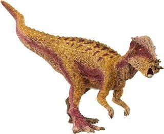 PACHYCEPHALOSAURUS 15024