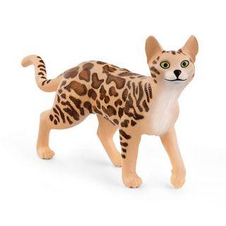 BENGAL CAT 13918