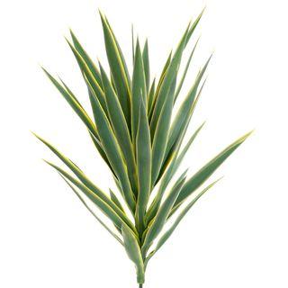 Yucca Head W/36 Lvs 78cm Green