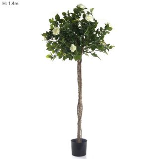 Rose Topiary 1.4m Light White