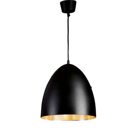 Egg Ceiling Lamp Black Silver