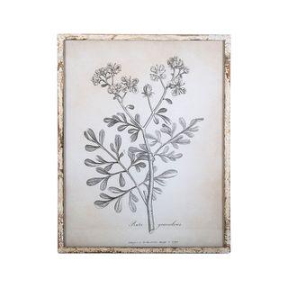 Sepia Leaves Framed 54x42x2