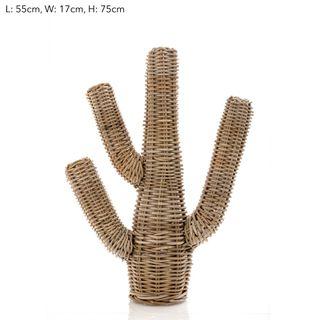 Cancun Cactus 75cm