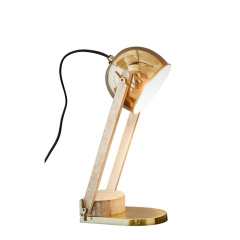 Karl - Brass - Domed Head Adjustable Table lamp