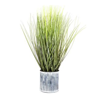Grass in Pot 64cm