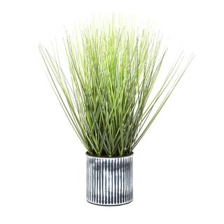 Grass in Pot 48cm