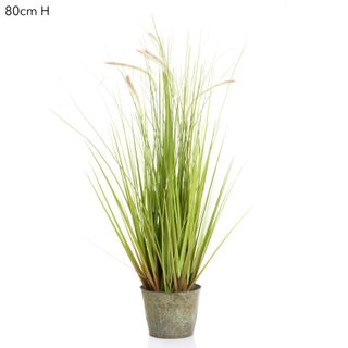 Grass Wheat in Metal Pot Cream Green