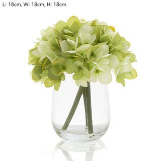 Hydrangea in Glass Vase Green