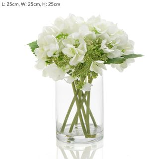 Hydrangea in Glass White