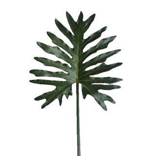 Leaf Philodendron Spray 85cm