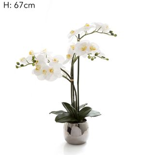 Phalaenopsis Real Touch Silver Pot