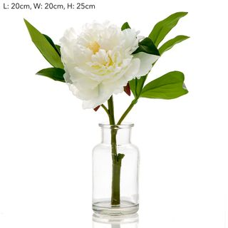 Peony in Glass Vase White