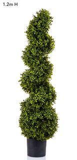 Boxwood Spiral Tree 1.2m