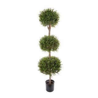 Lavender Tree 1.5m