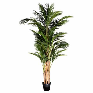 Palm Tree Real Touch 1.9m