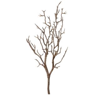 Branch Natural 1m