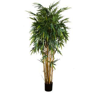 New Bamboo Tree 2.2m