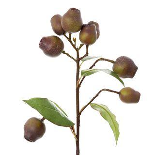 Eucalyptus Burgundy 67cm Green