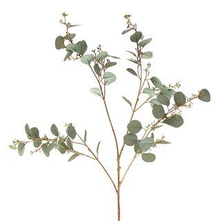 Eucalyptus Seed Spray 1.2m